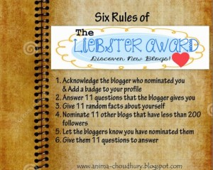 rules-for-liebster-award-1024x819